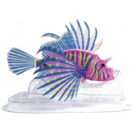 SUPERFISH FLUO TETE DE LION ROSE