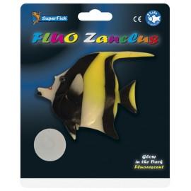 Superfish FLUO ZANCLUS