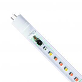 T5 LED Freshwater Pro 8000K 55cm - 8W