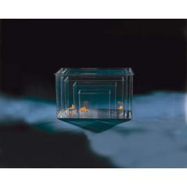Cuve Plastique 10L