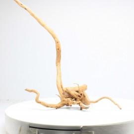 Racine Spider - SPDG27