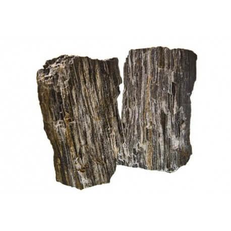 Glimmer Wood