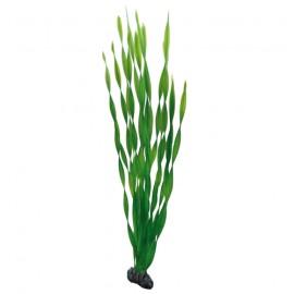 Hobby Plante artificielle Vallisneria 60cm