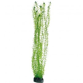 Hobby Plante artificielle Lagarosiphon 60cm