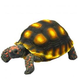 Hobby Turtle 1