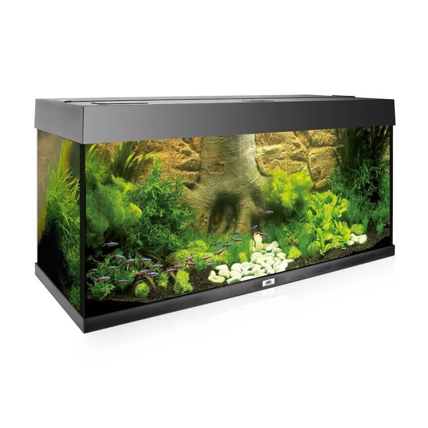 Fonds Résinés Pour Aquarium Fond Arrière Root Juwel 600x550mm