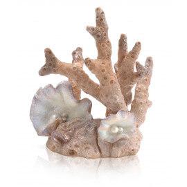 biOrb Corail petit décor