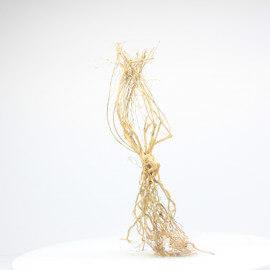 Racine Tree Roots - TR15