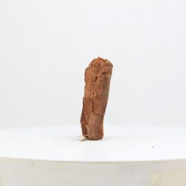 Racine De Mangrove - MGFE26