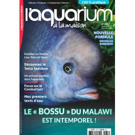 Aquarium à la Maison N°136