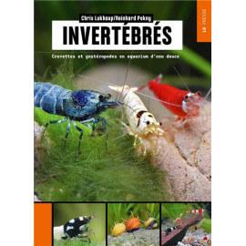 Invertébrés : Crevettes et gastéropodes en aquarium d'eau douce
