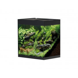 Oase Styline Aquarium Noir 85