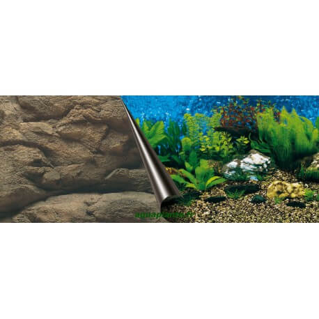 Poster Sea + Rock