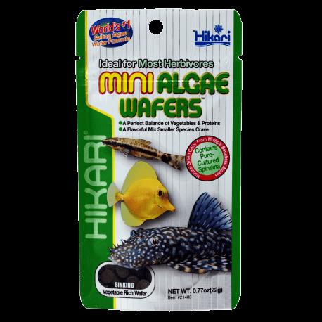 Hikari Mini Algae Wafers 22 gr