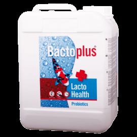 Colombo Bactoplus Lacto Health 5L