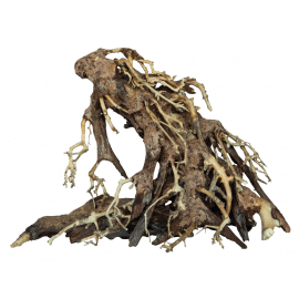 Superfish BONSAI ROOT S
