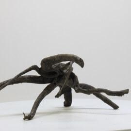 Racine Black Spider - BSPNO06