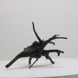 Racine Black Spider - BSPNO19