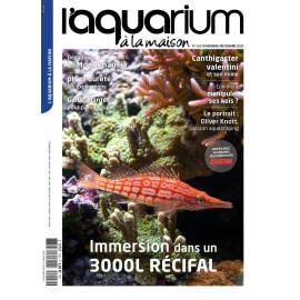 Aquarium à la Maison N°142 - Immersion dans un 3000L récital