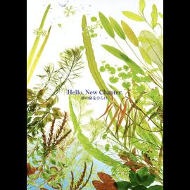 ADA Contest Book 2020