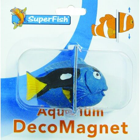 Deco Magnet Blue Tang