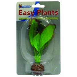 Plante Artificielle Echinodorus sp