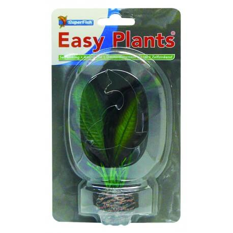 Plante Artificielle Echinodorus sp 2