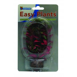 Plante Artificielle Ludwigia Rouge