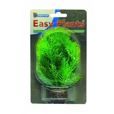Plante Artificielle Hygrophila sp