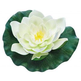 Pontec PondoLily blanc