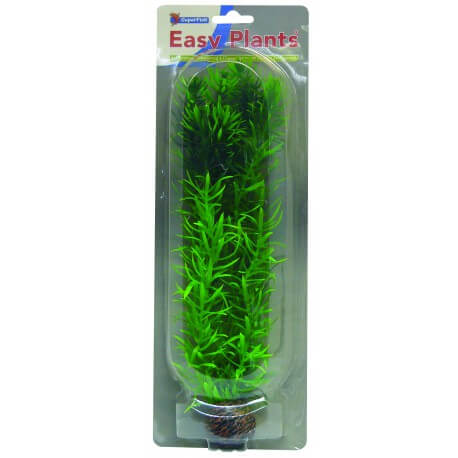 Plante artificielle Rotala Wallichii sp