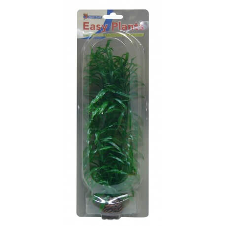 Superfish Plante artificielle Hygrophila sp Green