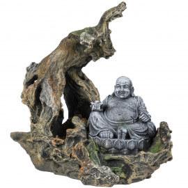 Aqua Della Buddha branche