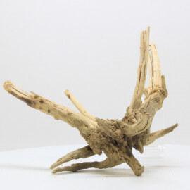 Racine Spider Golden Moor - SGMTG10