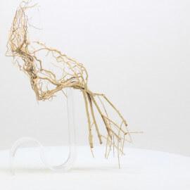 Racine Tree Roots - TRTDS7