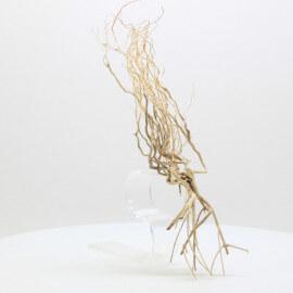 Racine Tree Roots - TRTDS10
