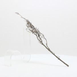 Nano Root - NRCG 4