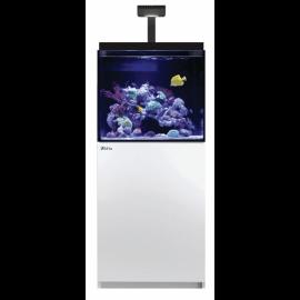 Red Sea Max® E 170 LED - 1 ReefLED - Blanc
