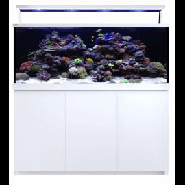 Red Sea Max® S-650 LED - 4 ReefLED - Blanc
