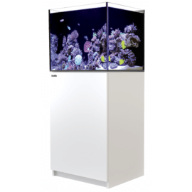 Red Sea Reefer™ 170 Blanc (Aqua + mbl)