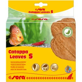 sera Catappa Leaves S 10–15cm