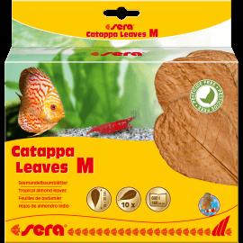 sera Catappa Leaves M 16–20cm
