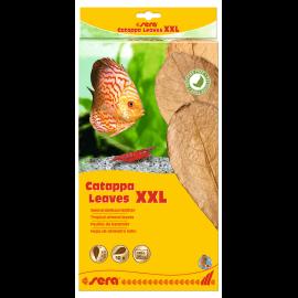sera Catappa Leaves XXL 30–35cm