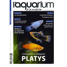 Aquarium à la Maison N°148 - Novembre / Décembre 2021