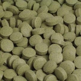 Tablettes Spiruline 95gr