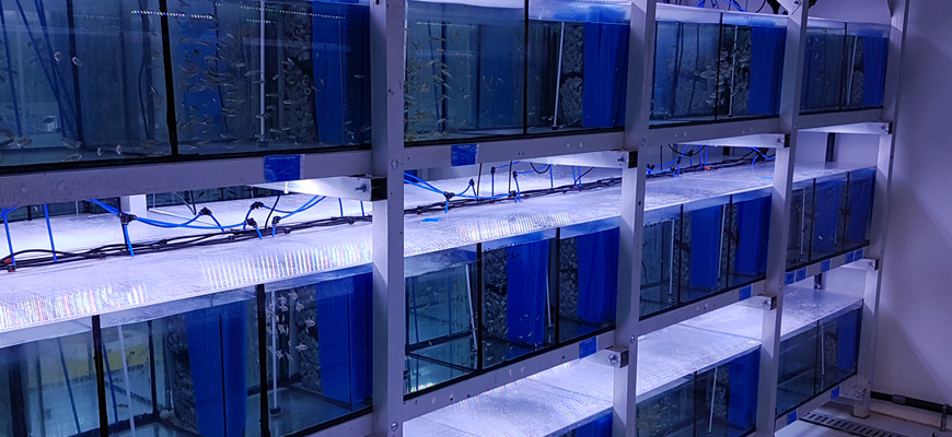 Batteries d'aquarium Univers Aquatique