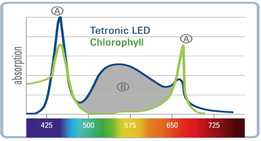 Spectre lumineux spécifique pour la croissance des plantes d'aquarium