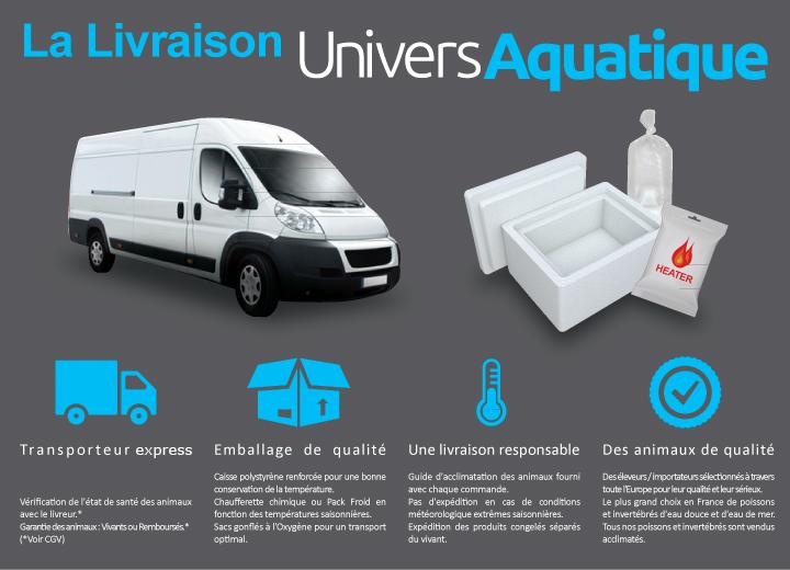 univers aquatique vous offre un très grand choix de poissons, crevettes et invertébrés d'eau douce et d'eau de mer pour aquarium.
