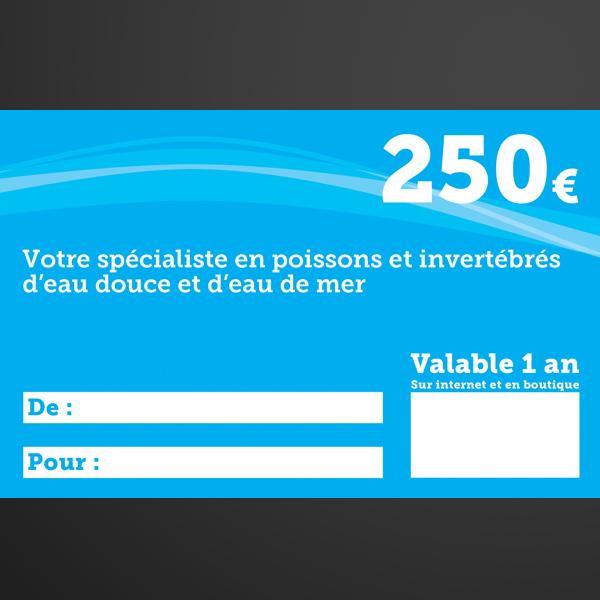 chèque cadeaux 250€