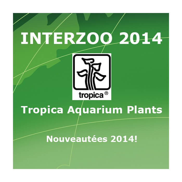 Interzoo 2014 : Tropica Aquarium Plants